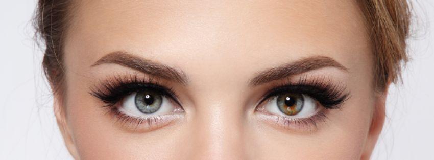 Das beste Augenbrauenserum – Produktvergleich
